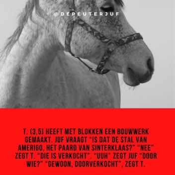 paard sinterklaas