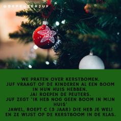 Kerstboom in huis