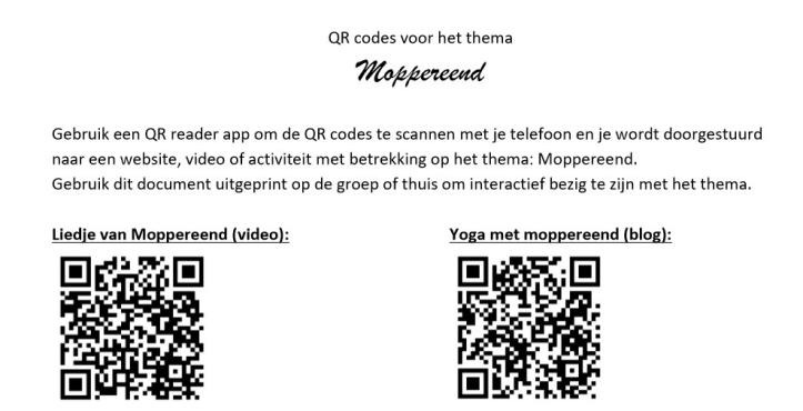 Screenshot moppereens qr codes